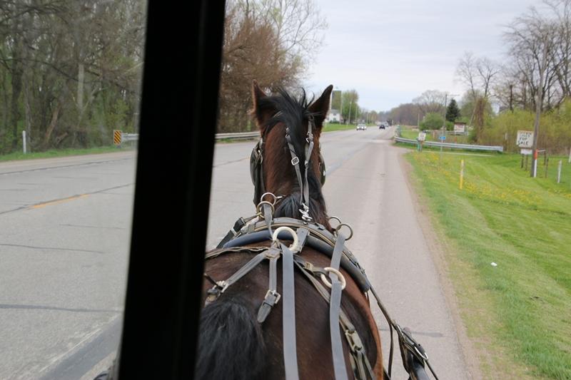 buggy rijden met overal aan